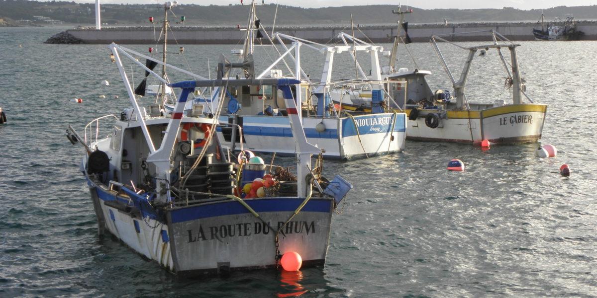 Bateaux côtiers – Port d'Erquy