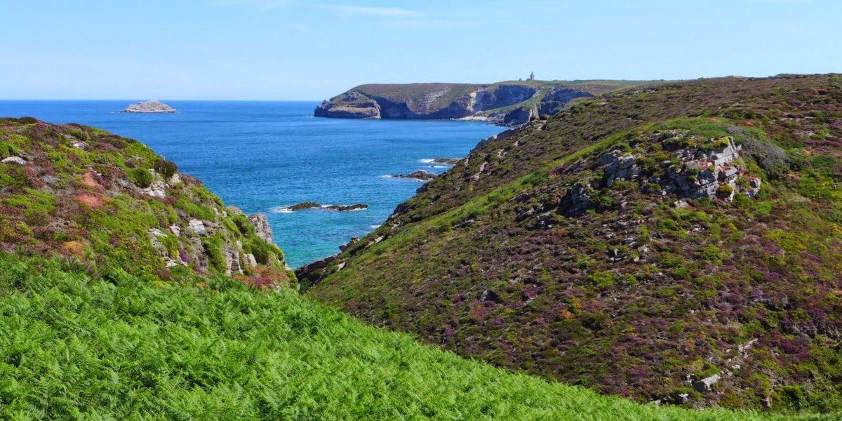 Vue sur le Cap Fréhel – Pierre Le Douaron