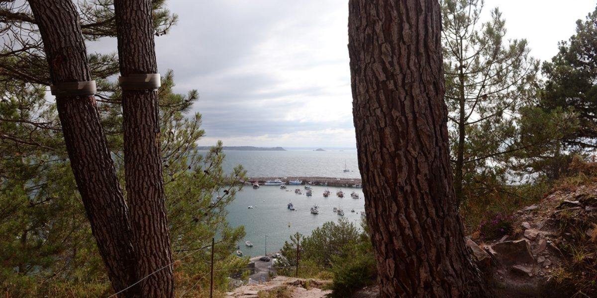 Le port d'Erquy depuis le Cap