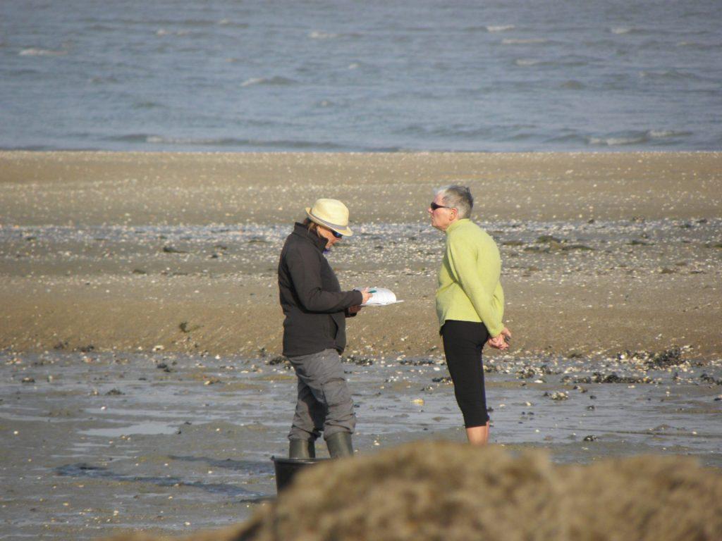 Le rapport 2018 de diagnostic de l'OPPL, site de la Baie de la Fresnaye, est téléchargeable !