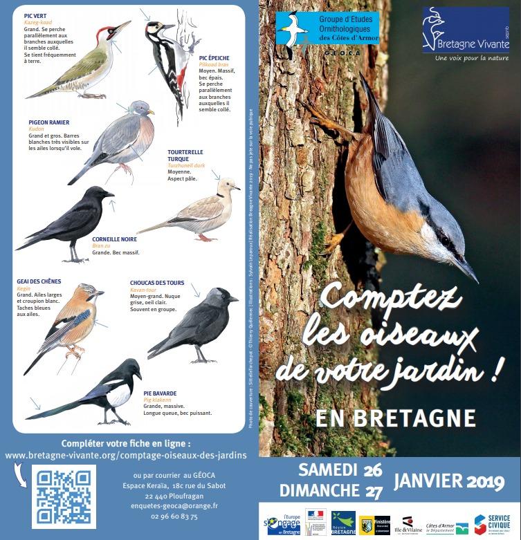 11ème Comptage des oiseaux des jardins en Côtes-d'Armor