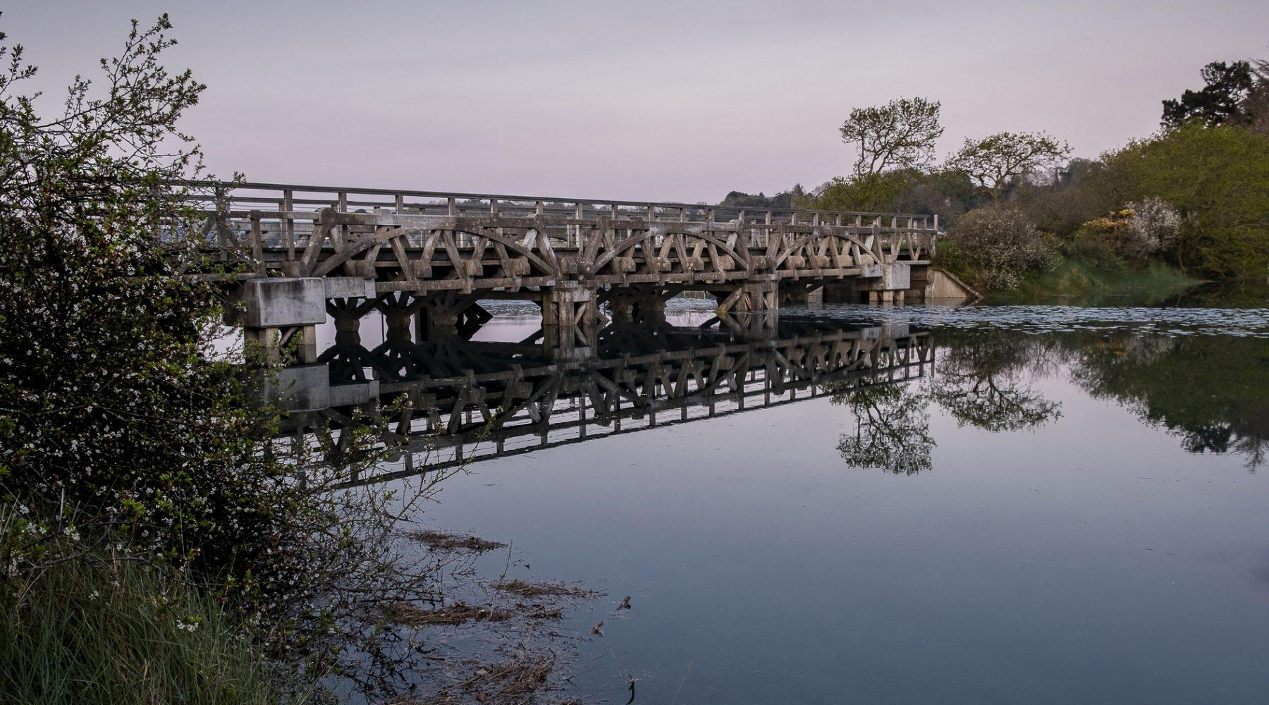 Le pont du marais – ©Odile Besnier